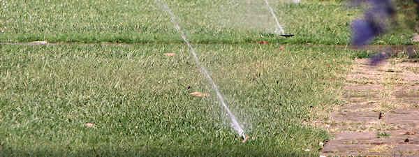 Sprinkler System Tune-Up